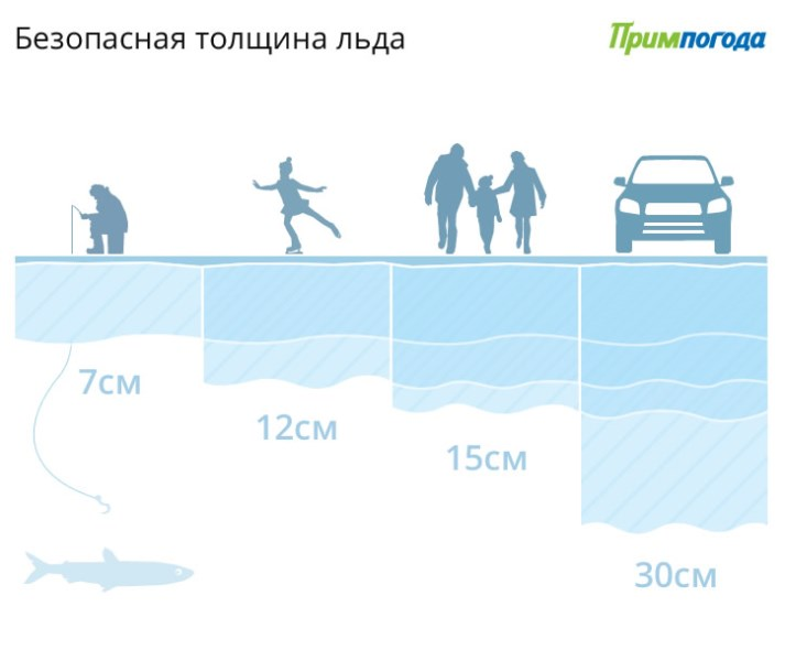 https://www.n-vartovsk.ru/upload/iblock/e7d/7387deeacff3e583a44e8316930fba2a.jpg
